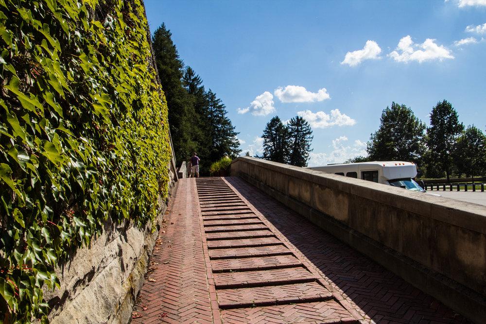 biltmore-mansion-grounds-asheville-55.jpg