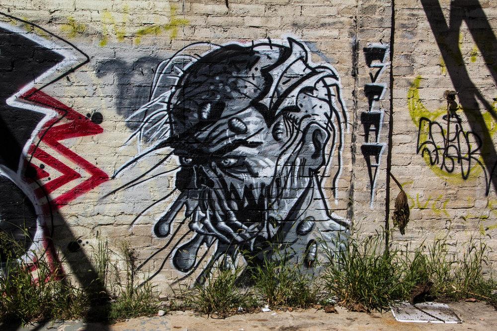street-art-asheville-north-carolina-2.jpg