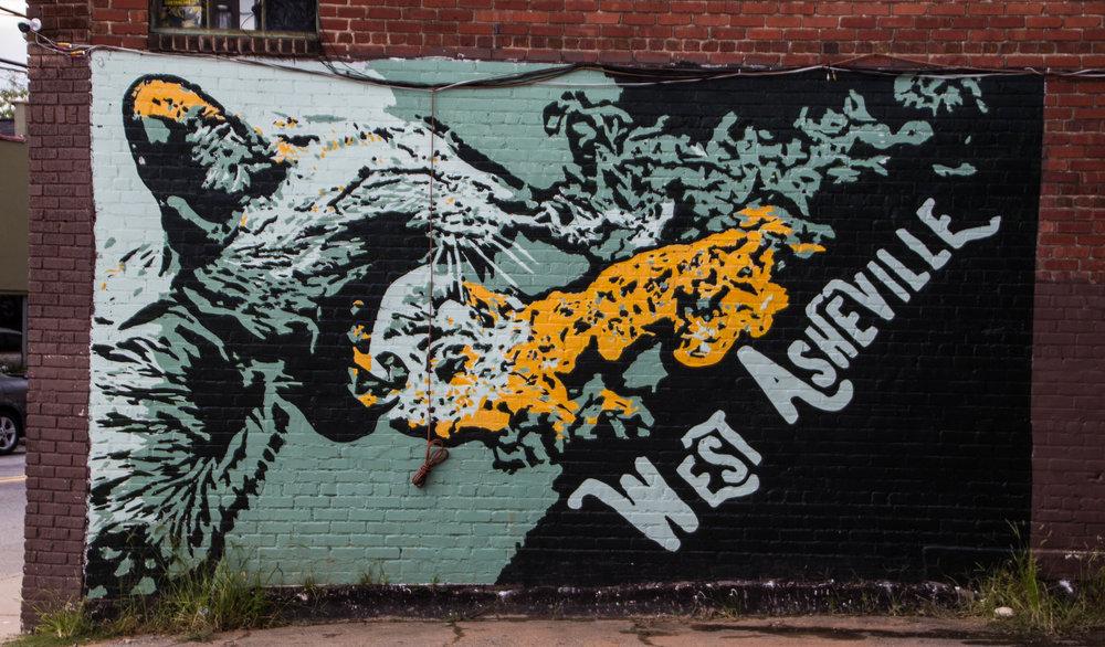 street-art-asheville-north-carolina-28.jpg