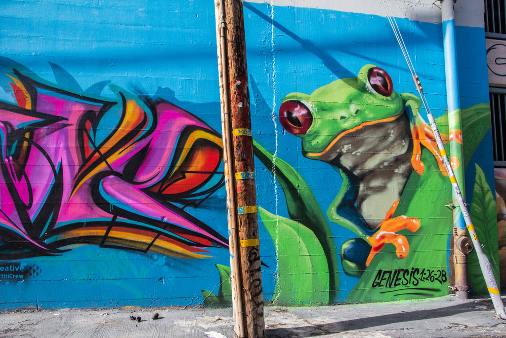 san-francisco-mission-district-street-art-27.jpg