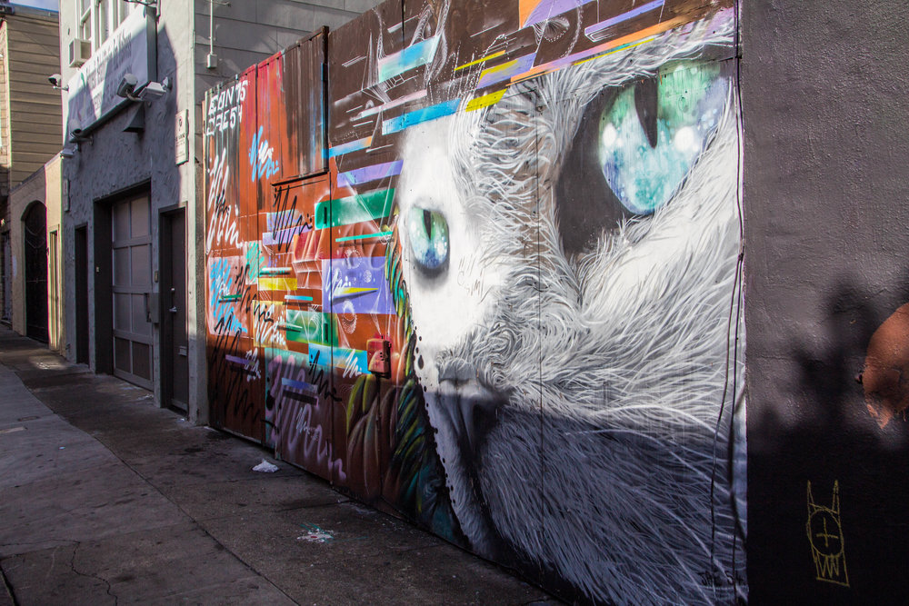 san-francisco-mission-district-street-art-57.jpg