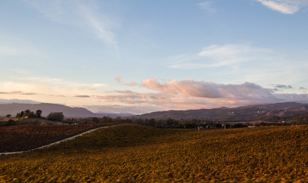 autumn-colors-napa-valley-51.jpg