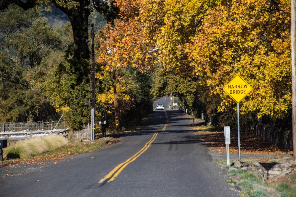 autumn-colors-napa-valley-27.jpg