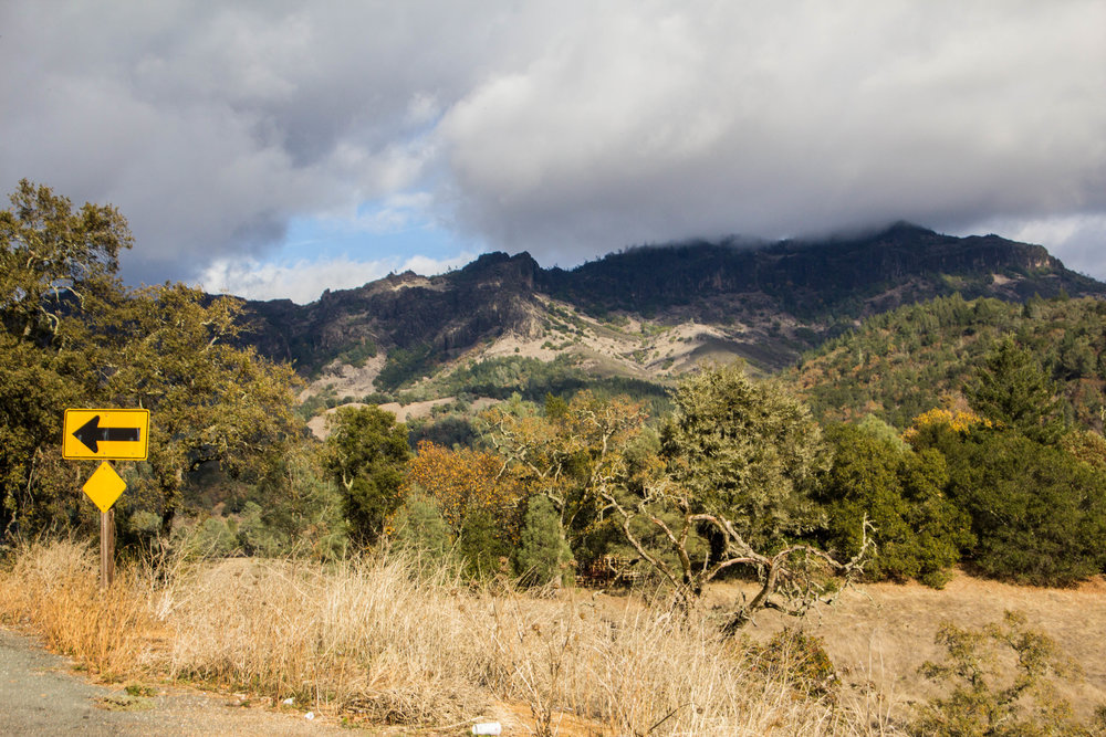 autumn-colors-napa-valley-37.jpg
