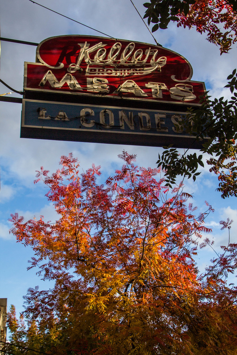 autumn-colors-napa-valley-49.jpg