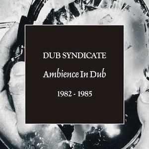 dub-syndicate_ambiance.jpg