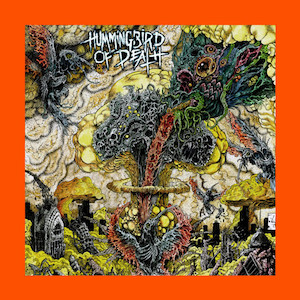 Hummingbird-Death.jpg