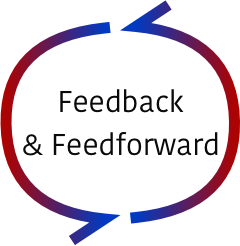 Feedback & Feedforward.png