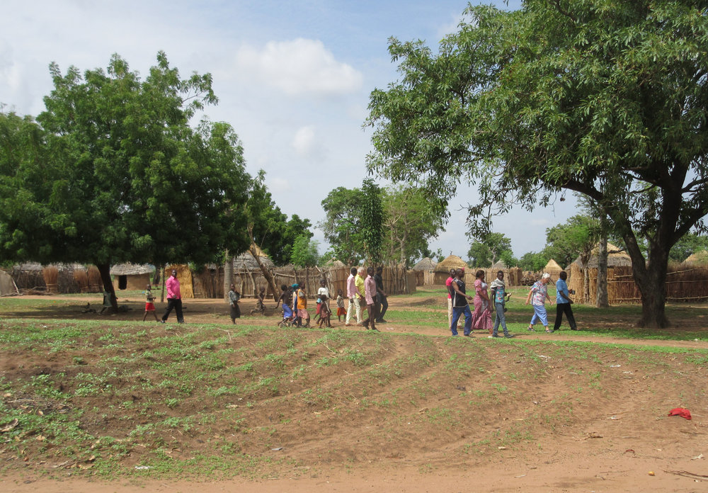 Rural village with surrounding farm plots. Taraba State, Nigeria.
