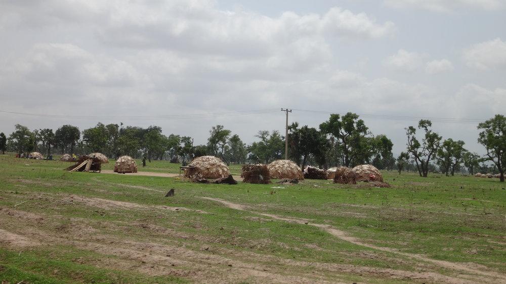 Fulani dwellings.