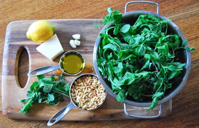 Pea Shoot Pesto With Lemon And Mint | Front Range Fed