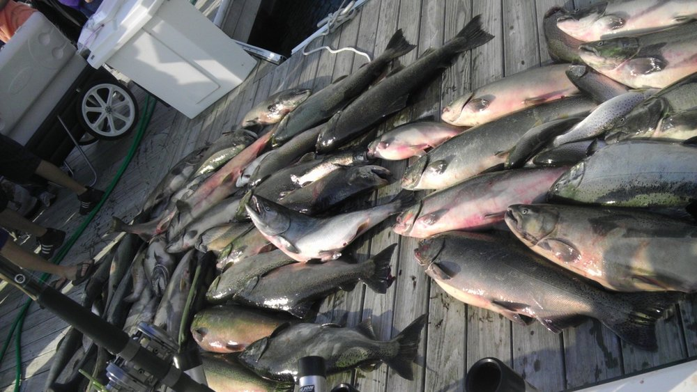 Milwaukee Charter Fishing Monster Limit Catch