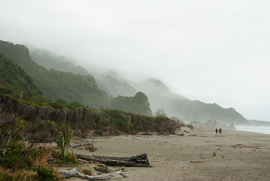 NZ_West-Coast_South-Island.jpg