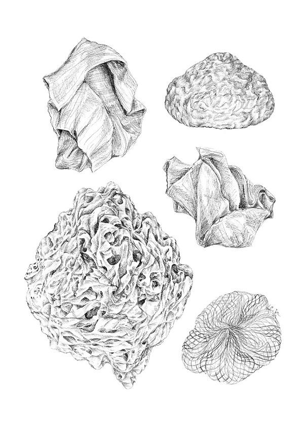 Fictionary of Finnish Mushrooms_Fanny Felicia Svanberg_1.jpg