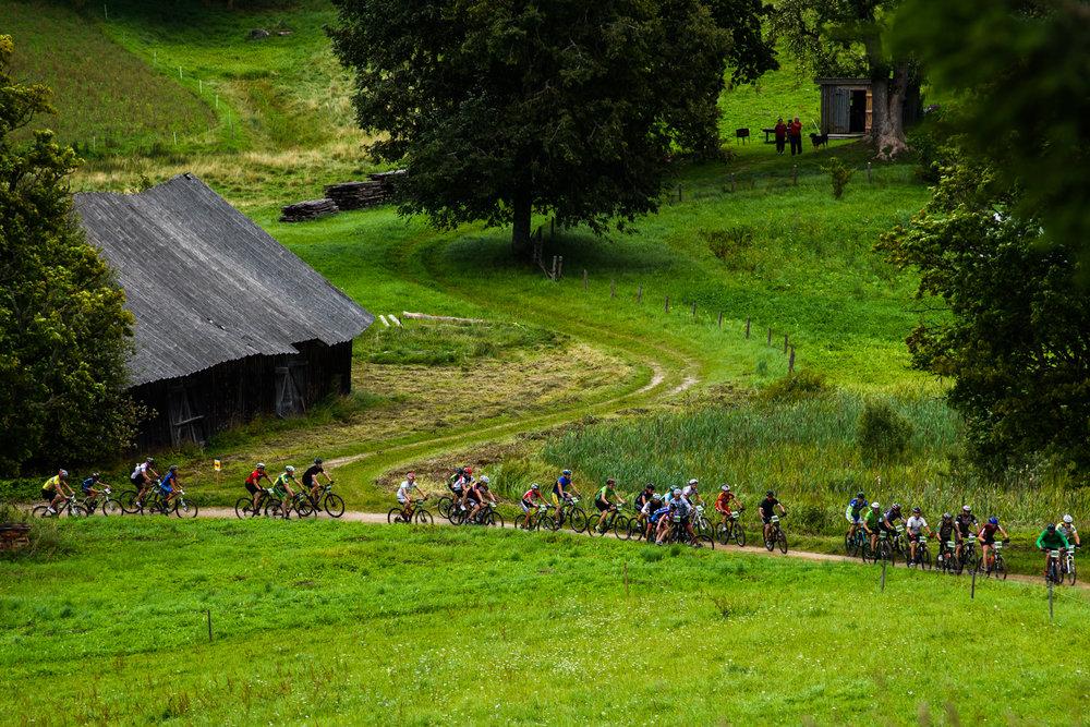 14.08.2016. SEB MTB maratona posms Talsos.