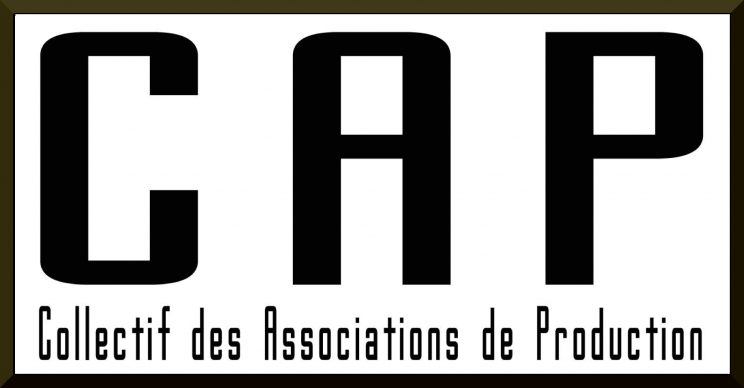 cropped-site_logo21-744x388.png