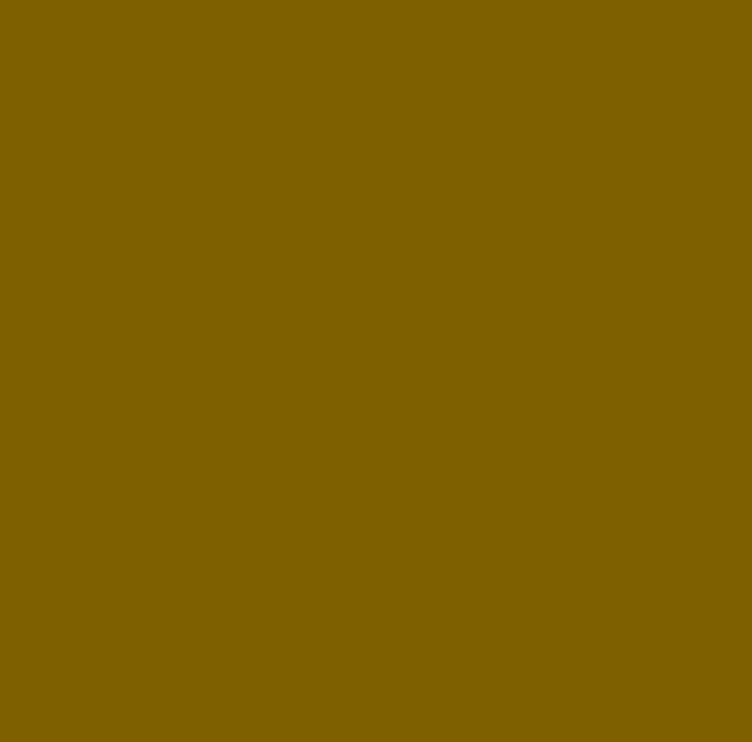 BRUN jaune.jpg