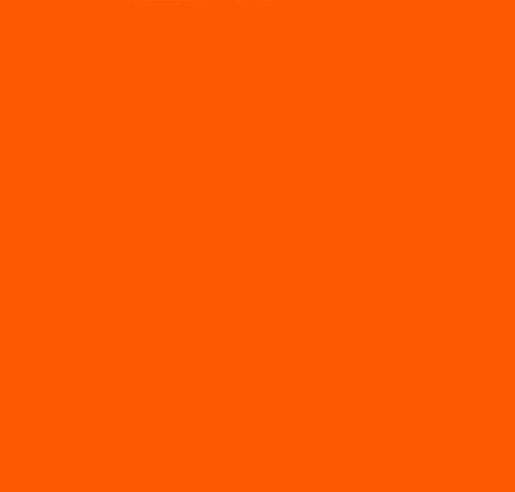 36b1a3bfdb7a5f894de5f6d7b30da34a--pantone-orange-pantone-color.jpg