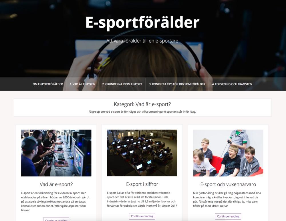 e-sportforalder