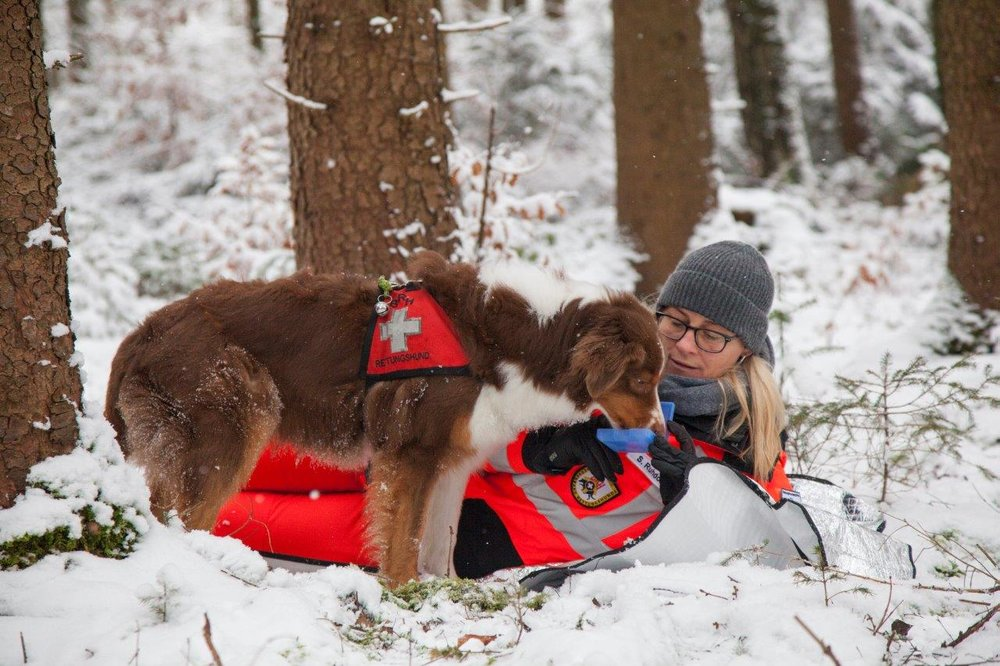 Rettungshundestaffel BA (6).jpg