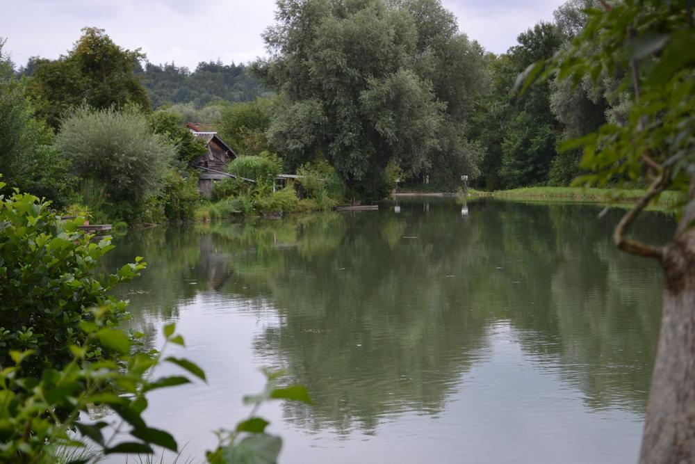 Ruhe-Oase in Schöngeising.