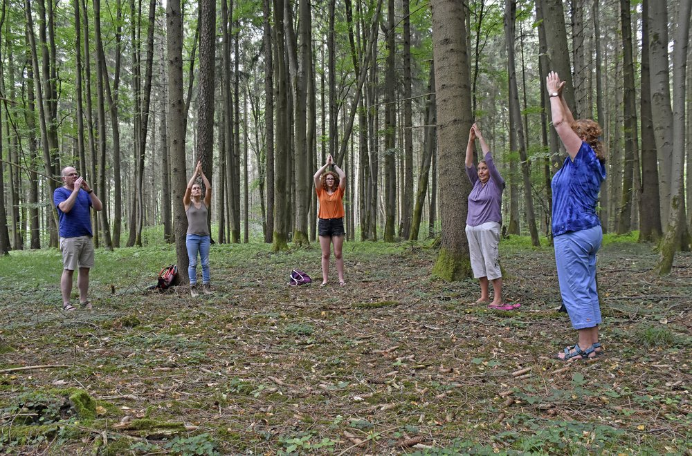 """Der Wald ist der natürliche Lebensraum des Menschen. Schon allein deshalb, findet nicht nur Angela Weinfurtner, sollte man sich hier öfter aufhalten. Laut Gesetz darf sogar jeder zur Erholung in den Wald gehen, auch wenn """"Privat"""" am Weg steht (solange der Wald nicht eingezäunt ist und wir nichts verändern)."""