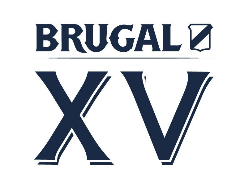 Logo XV en azul.jpg