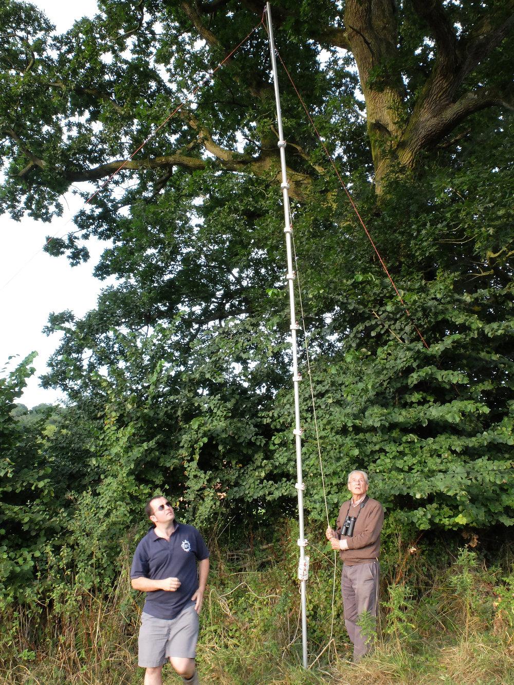 Erecting the Triple High net