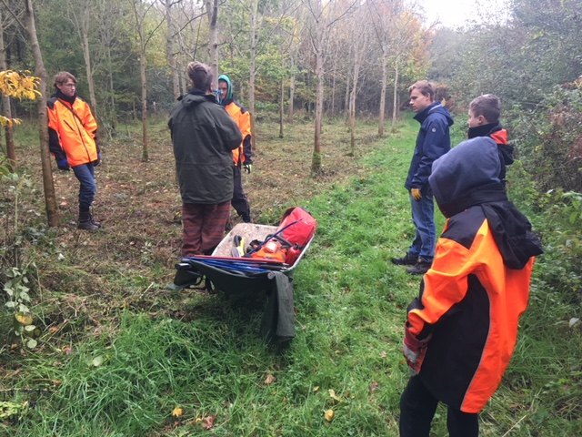 First group of young people being instructed in safe, small tree felling.