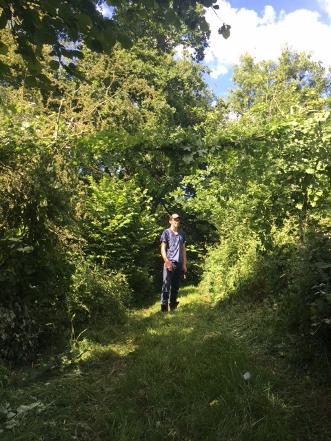Jack standing beneath a new and improved Dormouse bridge.