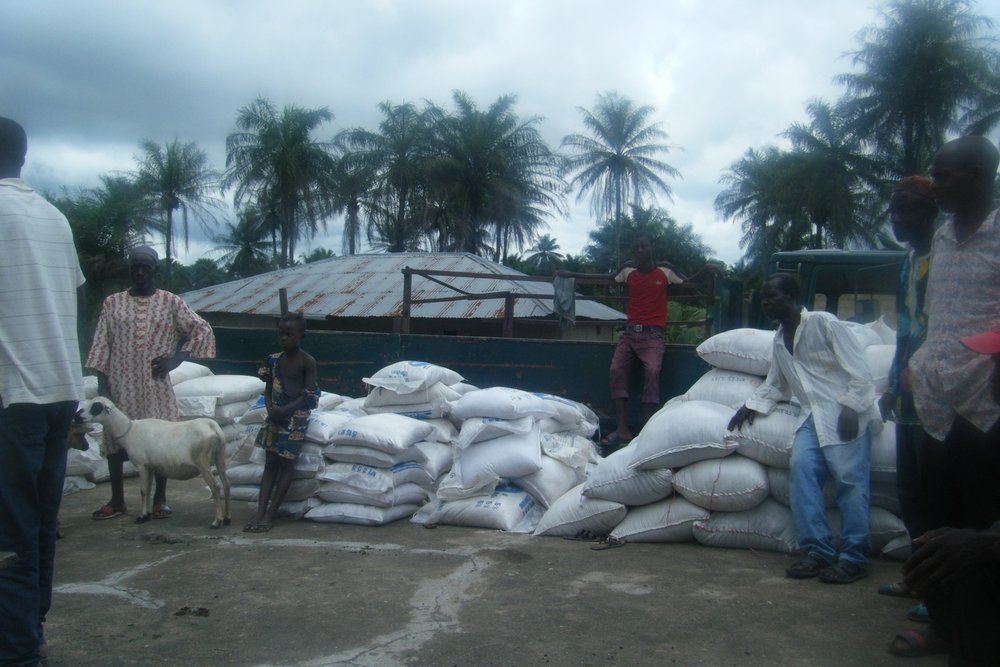 Distribution of Agric Inputs to farmers at Makuthaneh (11).jpg