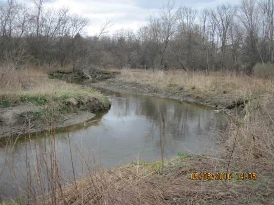 The Allen Brook in Williston, VT with newly planted trees forming a riparian buffer
