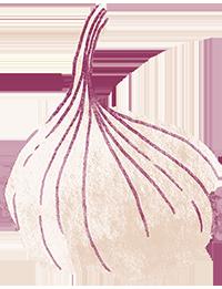 Garlic_RGB_200px_V1.png