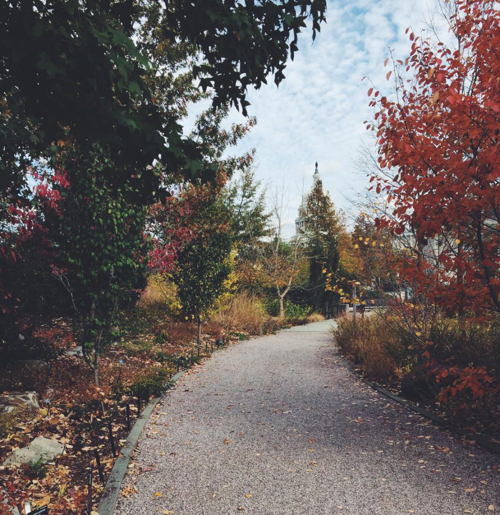 Botanic Gardens DC