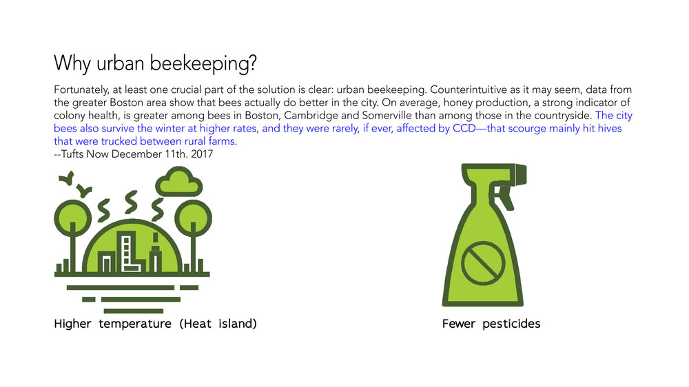 bee research 3.png