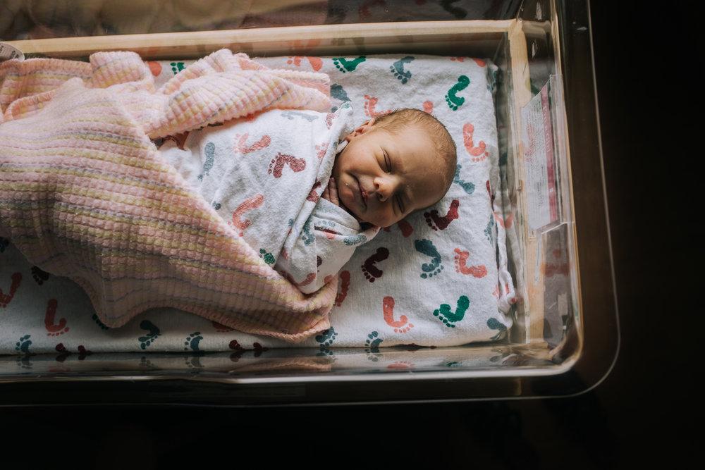 Lewis - Family - Parker - Adventist - Denver - Colorado - Fresh - 48 - Photographer (2 of 40).jpg