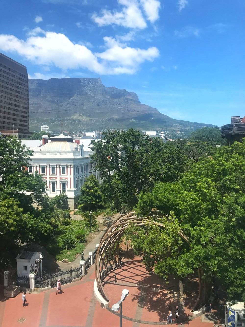 Our Hotel Room View - I loved the view of our hotel room. On one end we could see the street still full of Christmas and New Year's decorations, on the other side we had this view - Table Mountain and a park. One day I was looking out the window and at the park I saw an albino squirrel being chased by a regular squirrel. I've never seen an albino squirrel before, so day made!