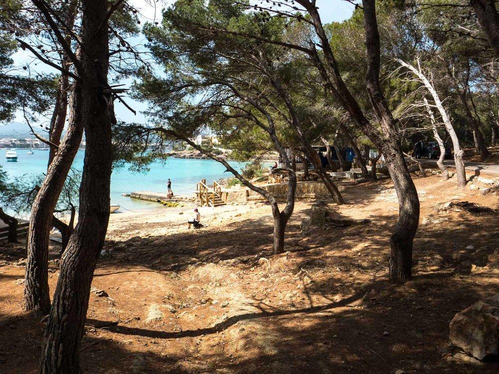 Felix-Eckardt_Mallorca_beach.jpg