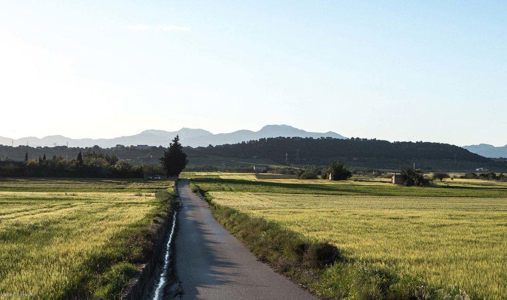 Felix-Eckardt_Mallorca_landschaft2.jpg