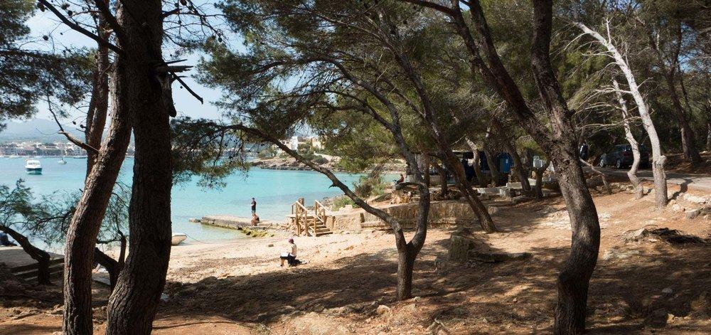 Felix-Eckardt_Mallorca_pines.jpg