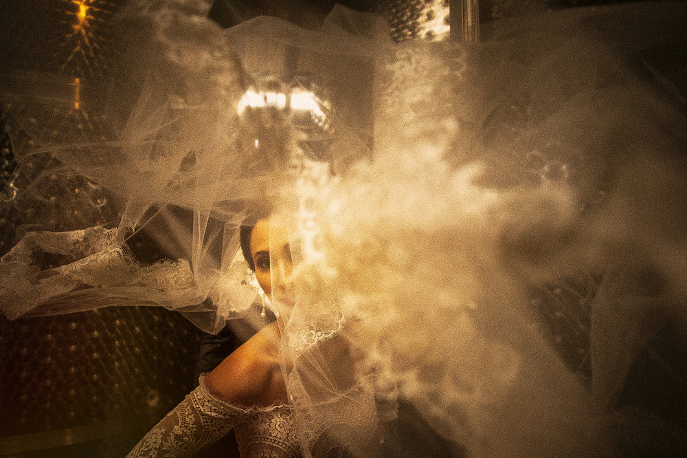 013-bride-art-potrait-veil-vineyard-ensenada.jpg