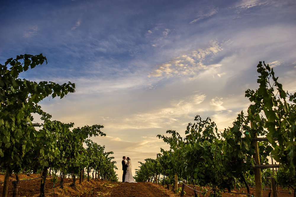 019-bride-groom-epic-fineart-wedding-vineyard-museo-del-vino-wedding-rutadelvino.jpg