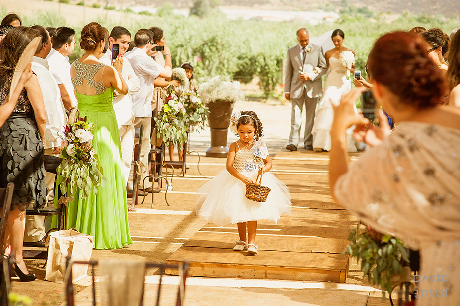 006_mexican_wineyard_wedding_davidjosue_DIY.jpg