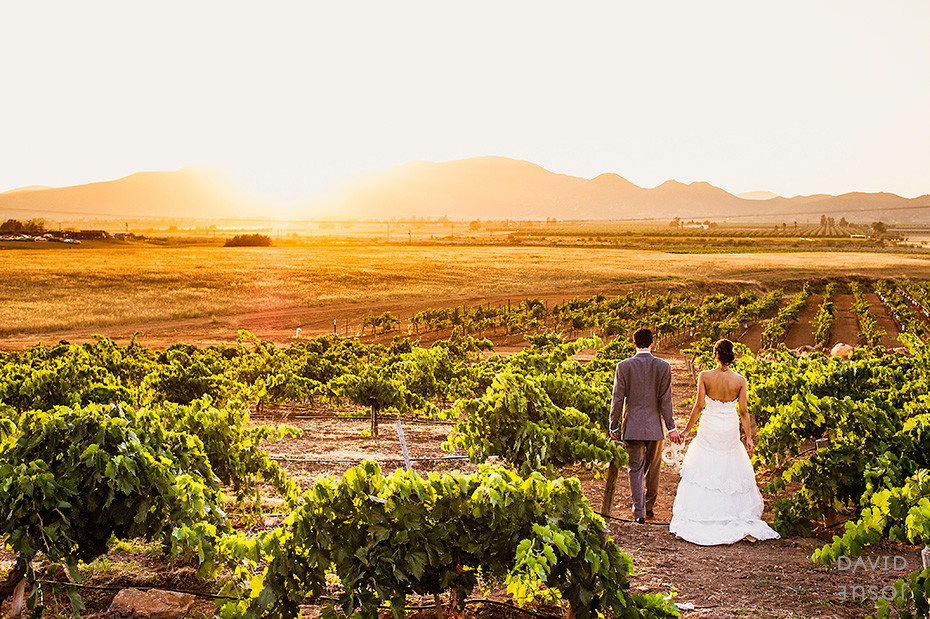 015_mexican_wineyard_wedding_davidjosue_DIY.jpg