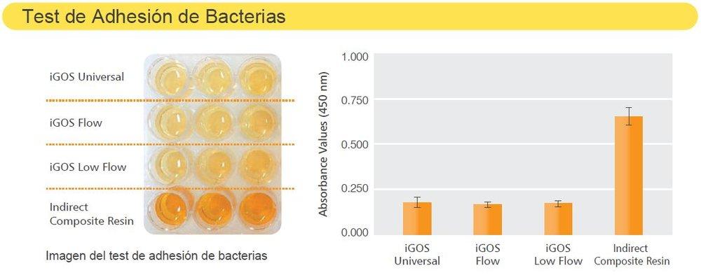 test adhesion bacterias.JPG