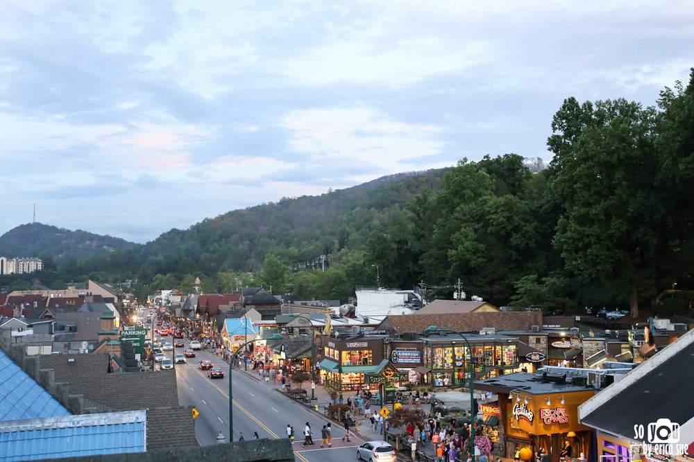 tn-tennessee-family-vacation-nashville-gatlinburg-so-you-by-erica-sue-8281.jpg