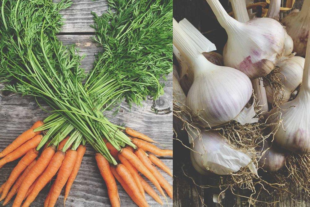 carrot-top-pesto