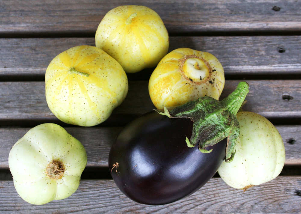whats-fresh-september-cucumber-eggplant.jpg