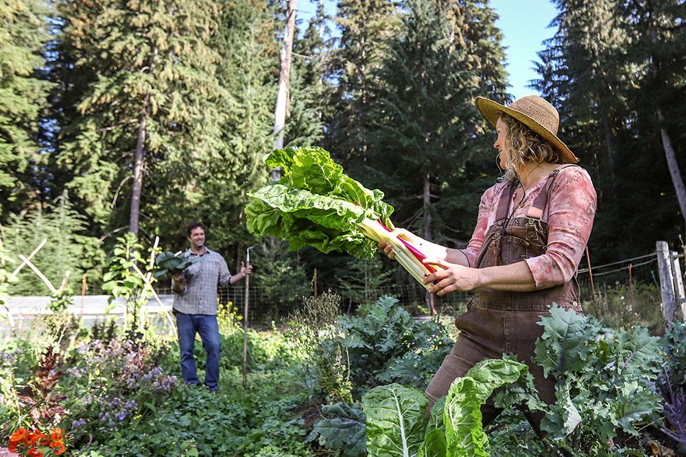 home-grown-food.jpg