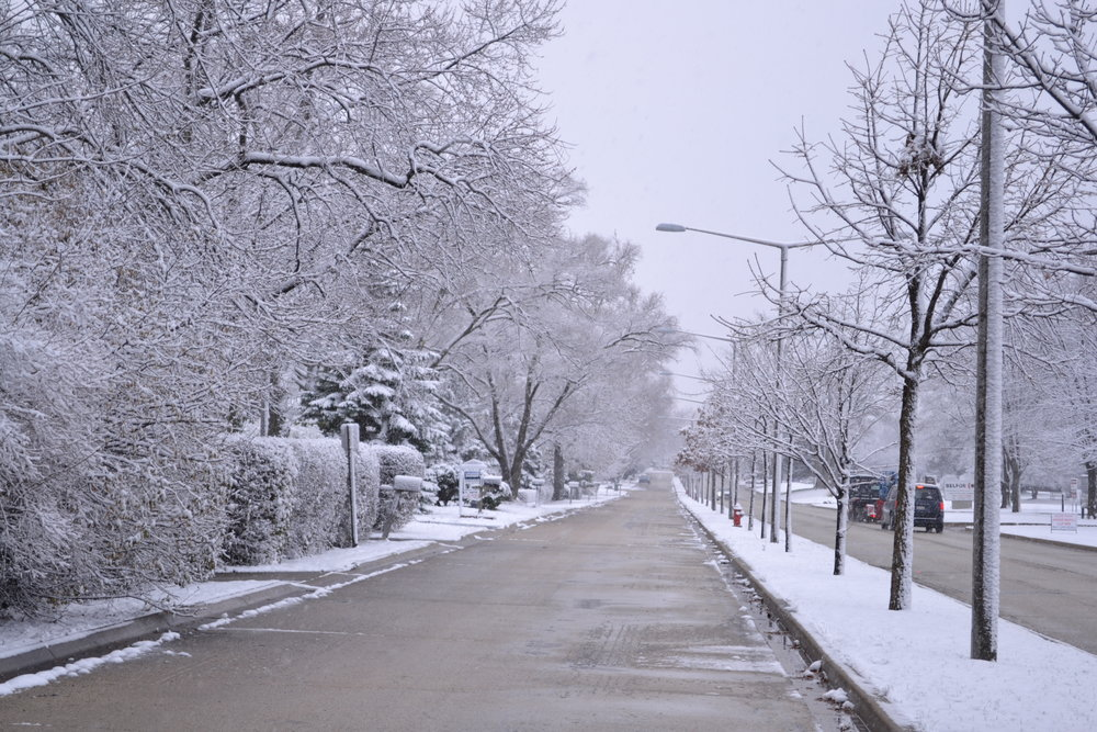 Snowflake_green.png